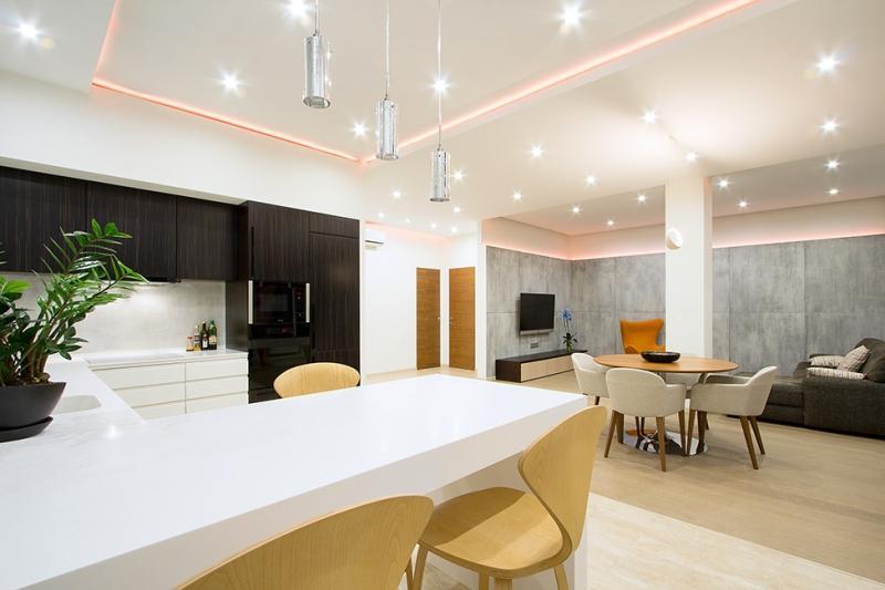 Как выглядит современная большая квартира-студия?