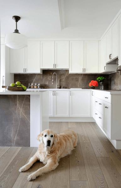 Дизайн кухни белого цвета: 65+ фото свежих и лаконичных дизайнерских проектов