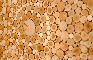 Красиво, дешёво, экологично: как декорировать стену спилами своими руками
