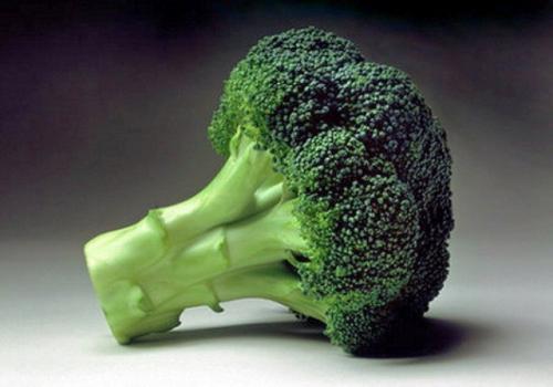 Сколько варить брокколи. Сколько и как правильно варить свежую брокколи: 4 вкусных и полезных рецепта